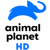 Animal Palnet HD